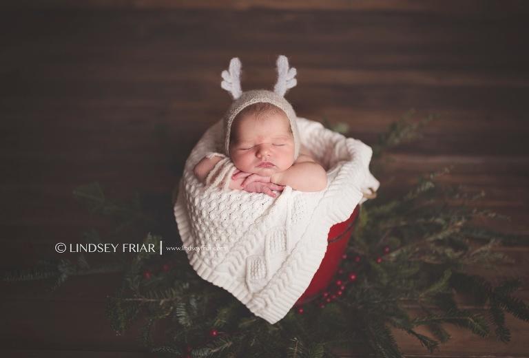 Pensacola Newborn Photographer - Lindsey Friar Photography 2015