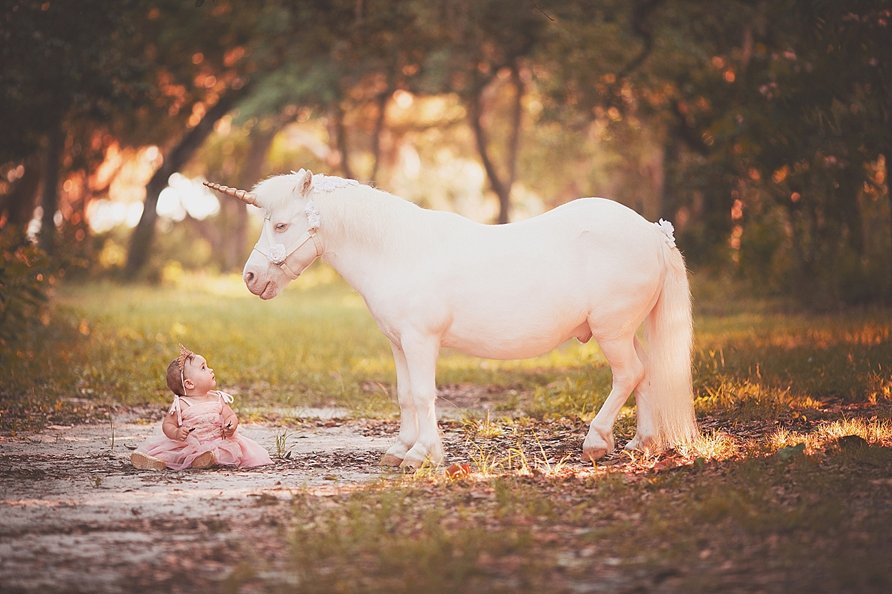 Outdoor Baby Swing >> Kinsley {1 year old Unicorn Mini Session} Gulf Breeze, FL Baby Photographer | Lindsey Friar ...